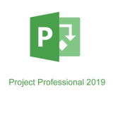 Project профессиональный 2019